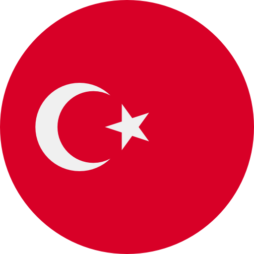 //pureassignment.com/wp-content/uploads/2020/08/turkey_country_icon.png